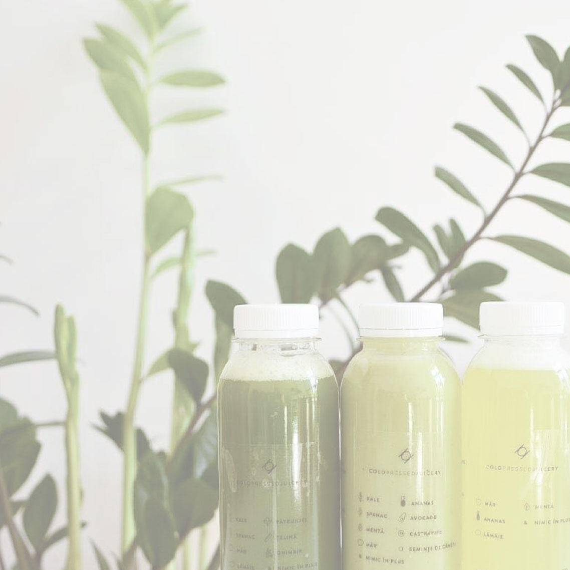Green Only Cleanse